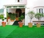 Hotel Baia Verde, Ischia